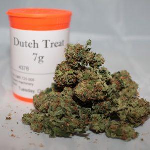 Dutch Treat Strain