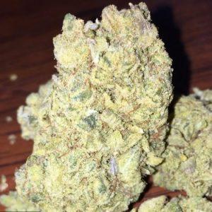 Elmer's Glue Weed