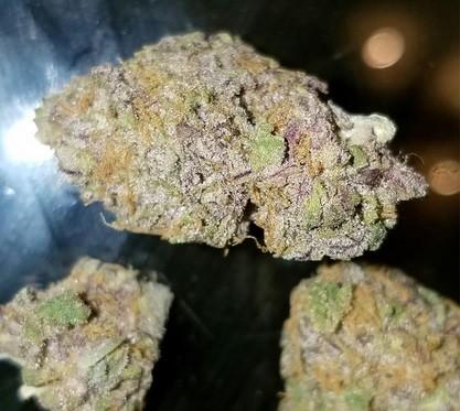 Lavender Weed Strain