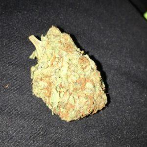 Bubble Gum Bud