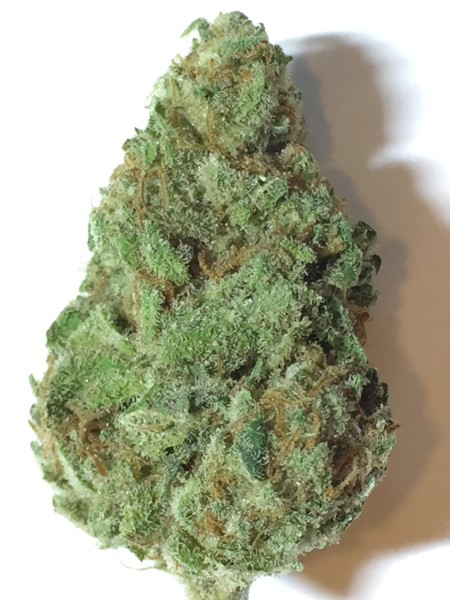 Deadhead OG Marijuana