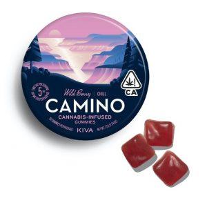 Kẹo cao su Camino Wild Berry Chill - 100mg