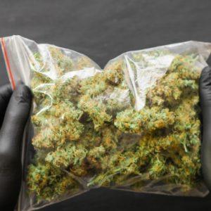Cannabis Flowers Europe